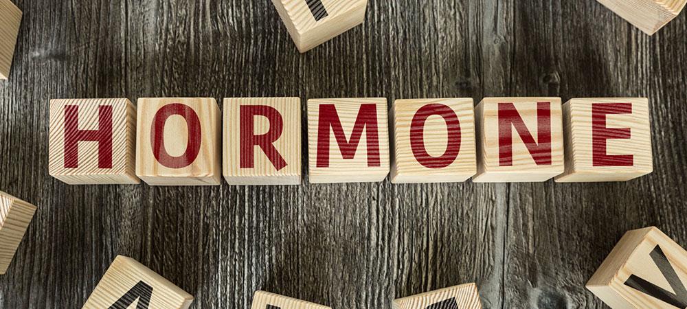 女性ホルモン