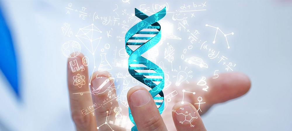 ハゲと遺伝